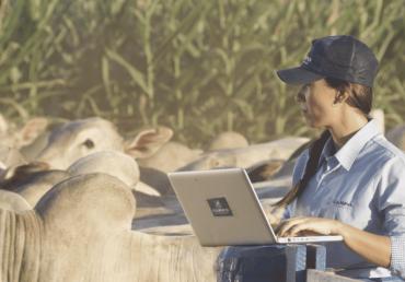 A importância de uma consultoria especializada em nutrição animal